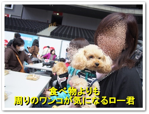 20140309_117.jpg