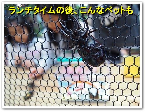 20140309_130.jpg