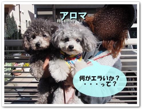 20140315_091.jpg