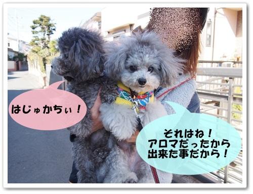 20140315_092.jpg