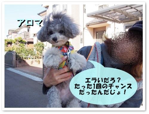 20140315_106.jpg