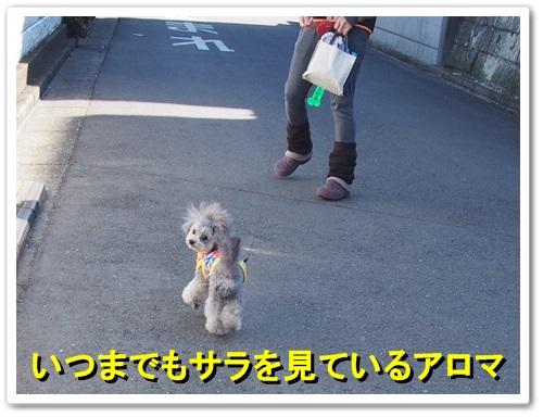 20140315_112.jpg
