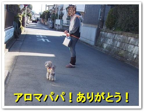 20140315_113.jpg