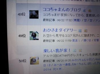 DSC_0600_convert_20140623161038.jpg