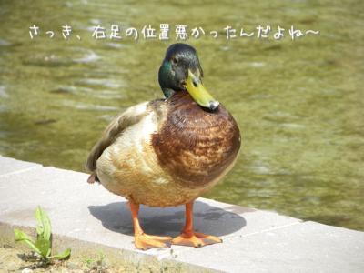 th_DSCN3165.jpg
