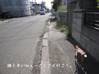 th_IMG_1407.jpg