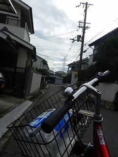 s-DSCN7310.jpg
