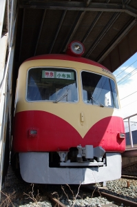 IMGP8334.jpg