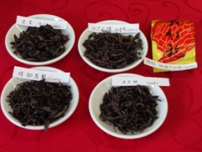 2014年岩茶交流会 2
