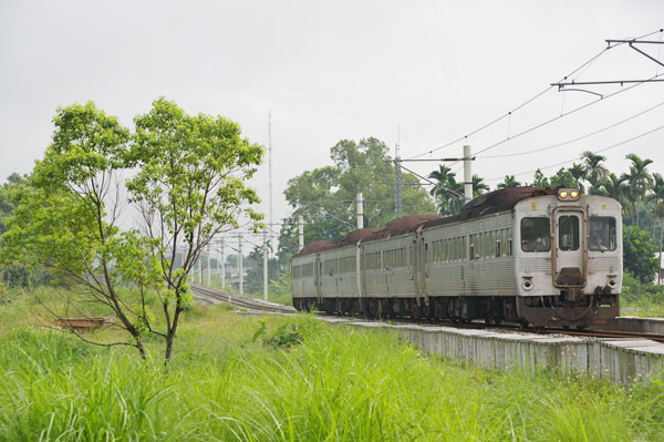 140607sanmin-tamasato1.jpg