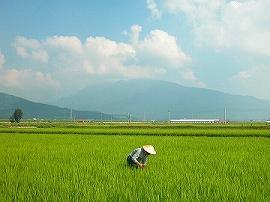 shoukai-tokusann-04-10.jpg