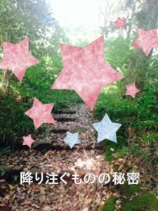 image_wsd1.jpg