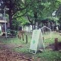 コロガル公園