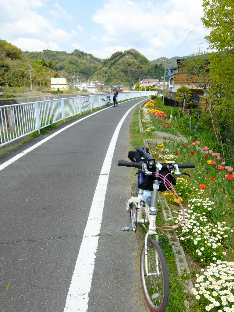 03DSCF4981.jpg