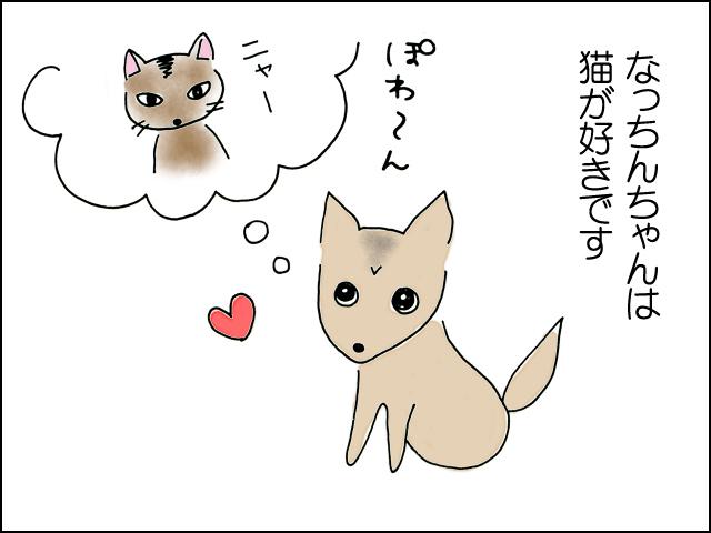 なっちんちゃんは猫が好き