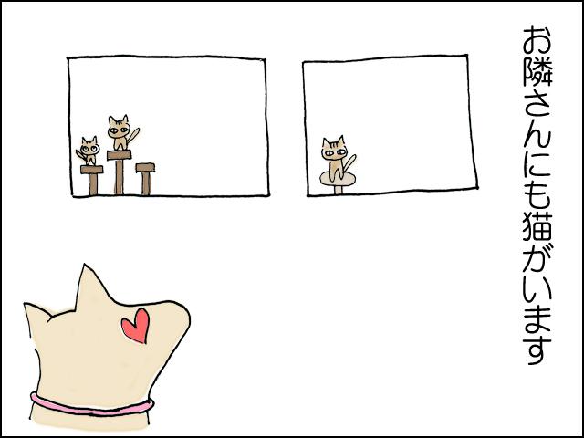 お隣さんにも猫がいます