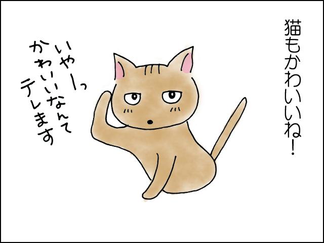 猫もかわいいね