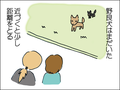 野良犬はまだいた。近づくと少し距離を置く