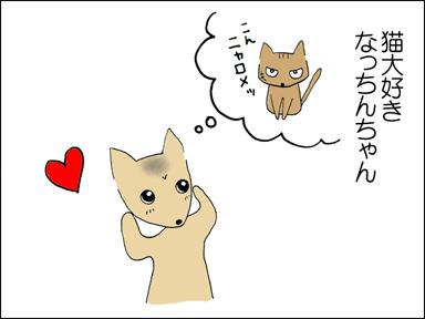 猫大好きなっちんちゃん