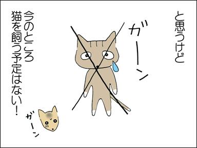 と思うけど、今のところ猫を飼う予定はなし