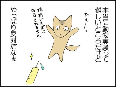 動物実験反対!!