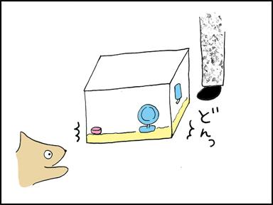 箱を目の前に置かれて見たら