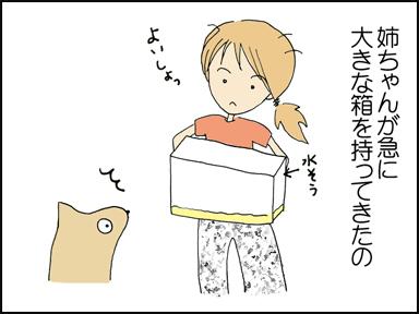 姉ちゃんが急に大きな箱を持ってきたの