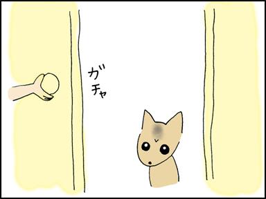 ドアを開けるとなっちんちゃんが・・・