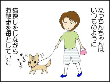 なっちんちゃんはいつものように母とお散歩