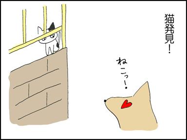 猫発見!!