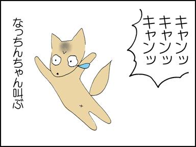 キャンキャンキャン!!なっちんちゃん叫ぶ!!