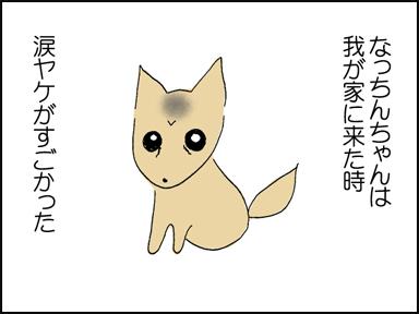 106涙ヤケ-1