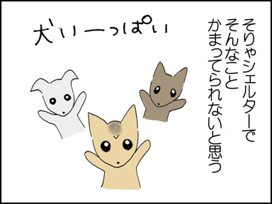 106涙ヤケ-2