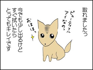 106涙ヤケ-4
