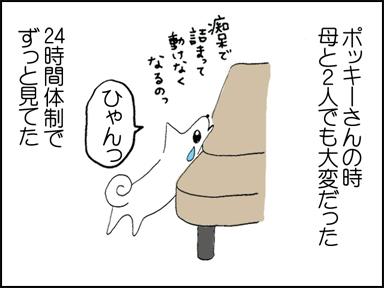 110ひとりっこ-3