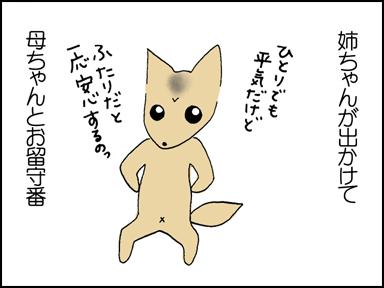 116母ちゃんとお留守番-1