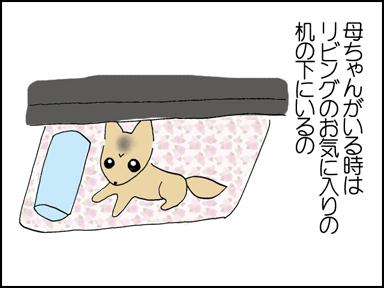116母ちゃんとお留守番-2