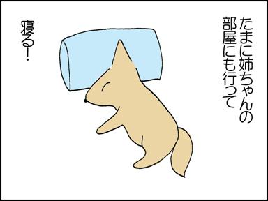 116母ちゃんとお留守番-4
