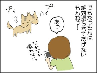 127デジカメ母-4