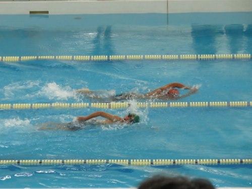 2014_7_22郡市水泳4