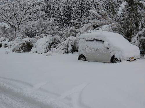 2014_2_14大雪5