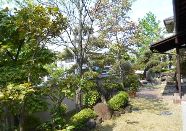 我が家の庭 (1)