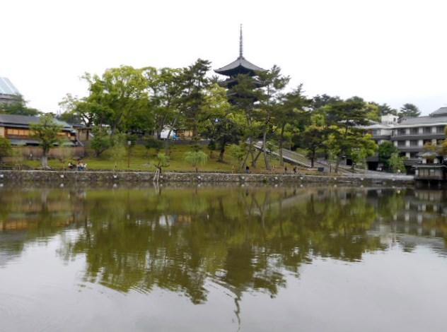 猿沢の池と五重の塔