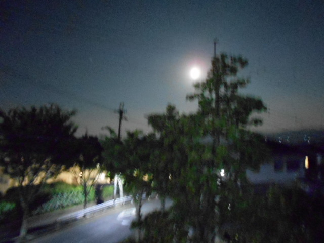夜空に輝く月