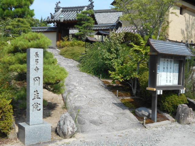 長弓寺「円生院」
