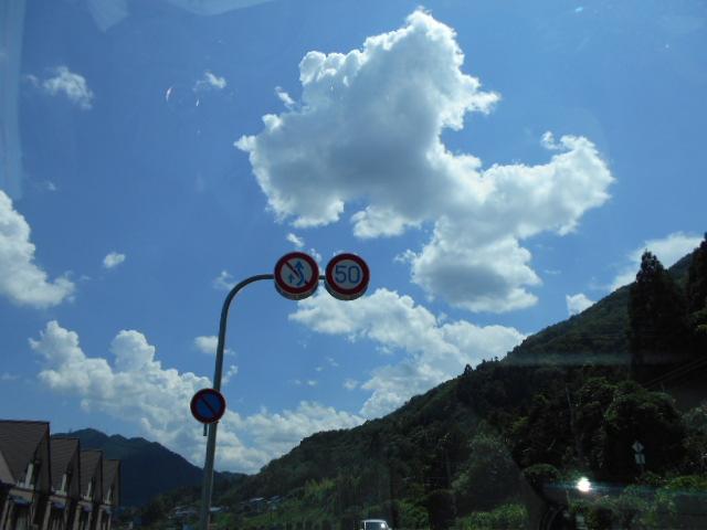 夏空「飛行機雲も見えて」・・・ (2)