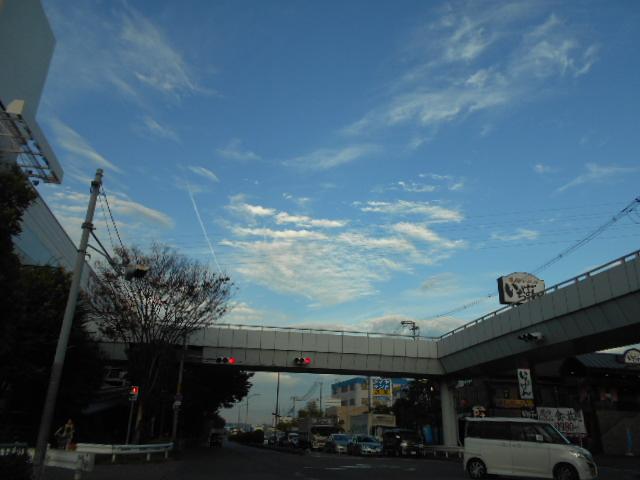 夏空「飛行機雲も見えて」・・・ (1)