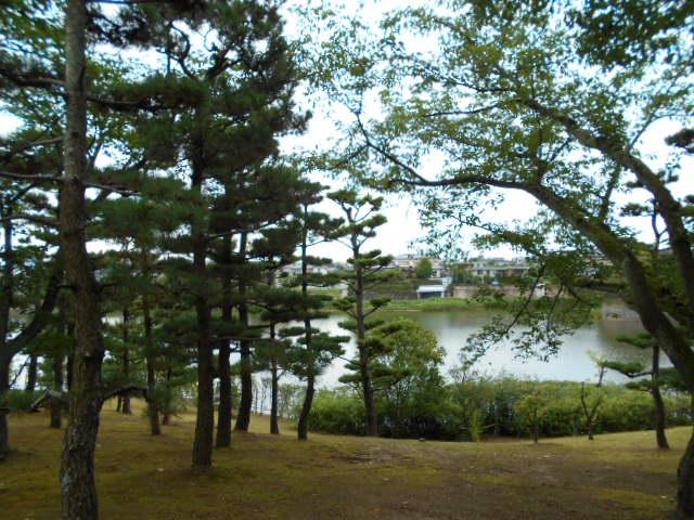 佐伯邸から見える大渕池