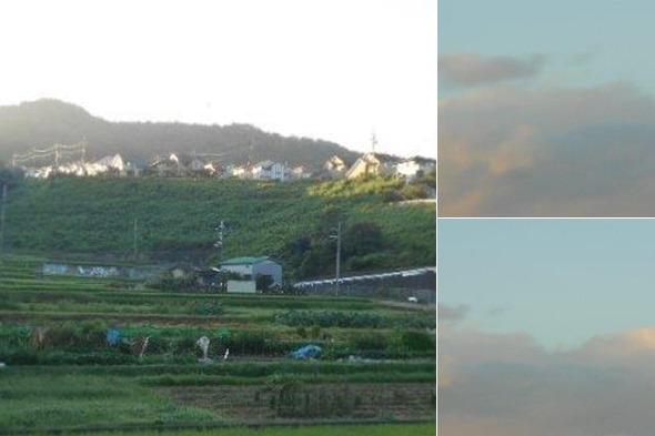 夜明けの空・一坪農園