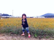 北九州市八幡西区の痛くない整体院 『えがお回復整体なごみ堂』-自然治癒力